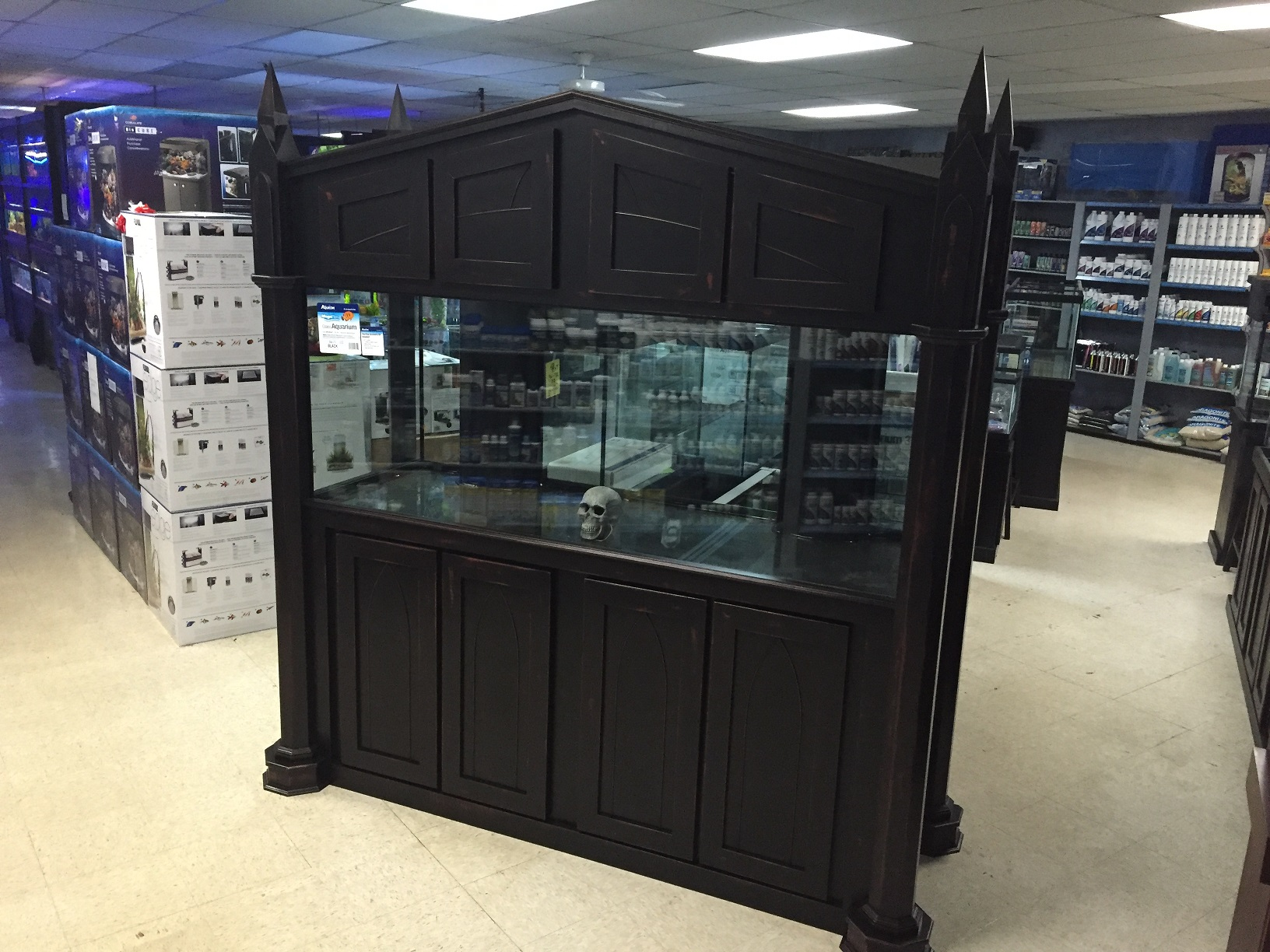 Fishy business for 300 gallon fish tank for sale